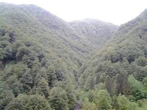 Parco delle Prealpi Giulie 4